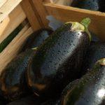 奥久慈なすを使った絶品料理を、家庭料理の達人たちに学ぶ「相葉マナブ」