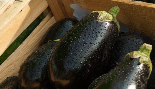 あさイチ:3シェフneo:橋本シェフの秋サバと秋ナスのクミンみそ焼き&根菜のクミンみそ汁の作り方