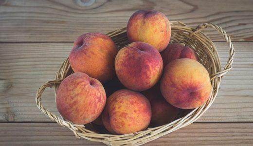 初耳学:樹木のツボを刺激するとフルーツの甘さが1.7倍に!