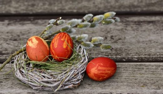 林修の今でしょ!講座:白い卵と赤い卵の栄養の違いはあるの?