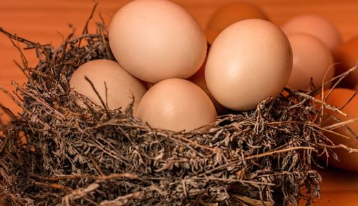 得する人損する人:ウル得卵液で作る30分スピード卵料理!