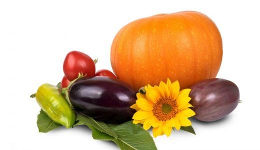 林修の今でしょ!講座:今食べるべき秋野菜!平野レミさんの時短レシピのチンぴーら丼の作り方