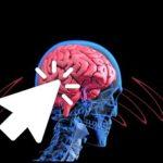 人体NHKスペシャル:脳のひらめきと記憶の正体を芥川賞作家の又吉直樹さんの脳を最先端の技術で徹底スキャン!