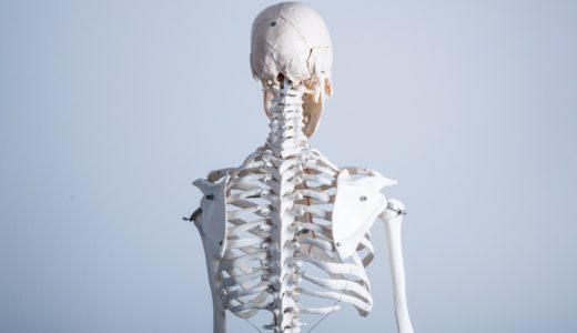 教えてもらう前と後:ガチガチ肩甲骨改善法~骨ストレッチのやり方