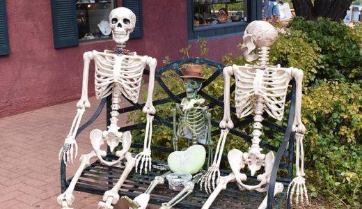あさイチ:あなたの骨は大丈夫?健康も美容も驚きの骨パワー。ビタミンDがキーポイント!