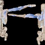 その差って何?首を動かすと首回りが痛い人と痛くない人の差とその改善方法