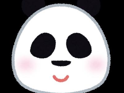 あさイチ:パック餅で「でこもち」パンダを作ろう!