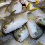 趣味どきっ!ご褒美スープ:家庭でつくる簡単!魚だしレシピ