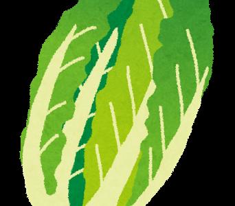 ハナタカ優越館:簡単コチュジャンレシピ翼流!高校生野菜ソムリエプロが教える冬野菜の目利き