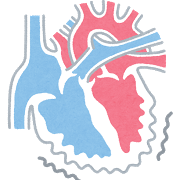 たけしの家庭の医学:心臓を長持ちさせるケトン体とは?ケトン体を増やすには夕食プチ断食