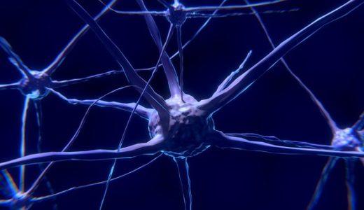 NHKスペシャル人体:神秘の巨大ネットワーク最終回!メッセージ物質で健康長寿!