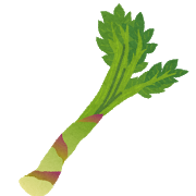 林修の今でしょ!講座:健康長寿がよく食べる山菜!ウドが身体を老けさせない!その食べ方とは?