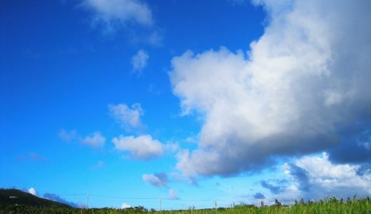 林修の今でしょ!講座:長寿島で発見!血管に良いきび酢パワー