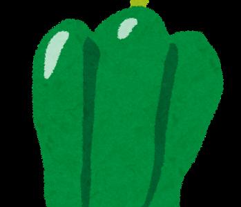 ソレダメ:ピーマンユッケ&無限ピーマンの作り方!ピーマン農家の美味しい食べ方