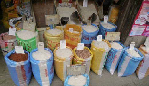 ヒルナンデス!梅雨の時期はお米が危ない!?プロが教える正しい保存法&古米復活術