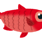 シューイチ:春の銚子おさかな御三家(イワシ・イカ・キンメ)をココリコが食べつくす