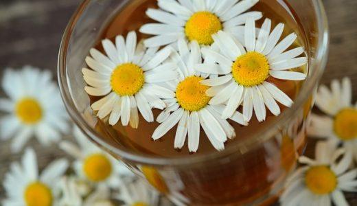趣味どきっ! 自律神経セルフケア術:カモミールの甘酒レシピで不眠解消!