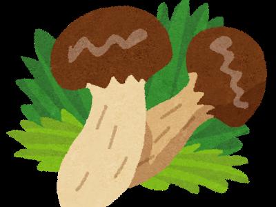 相葉マナブ:信州の松茸!絶品松茸料理レシピ
