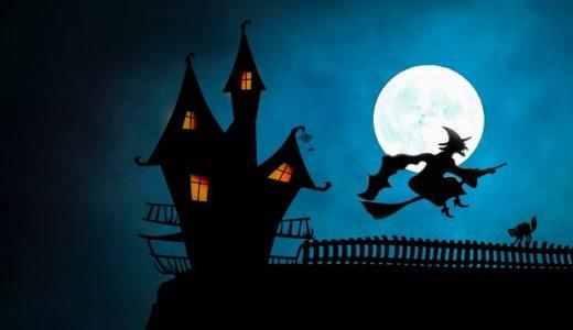 チコちゃんに叱られる!なぜ虫は夜光に集まるの?