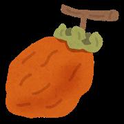 宝メシグランプリ:西条柿の干し柿の天ぷら&干し柿なます~中国ブロック