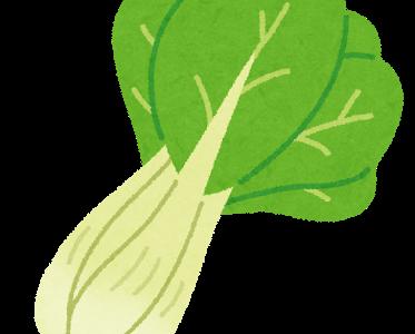 趣味どきっ!秋冬ベジらいふ:チンゲンサイのうま煮&ねぎ油の作り方!シャウ・ウェイシェフレシピ